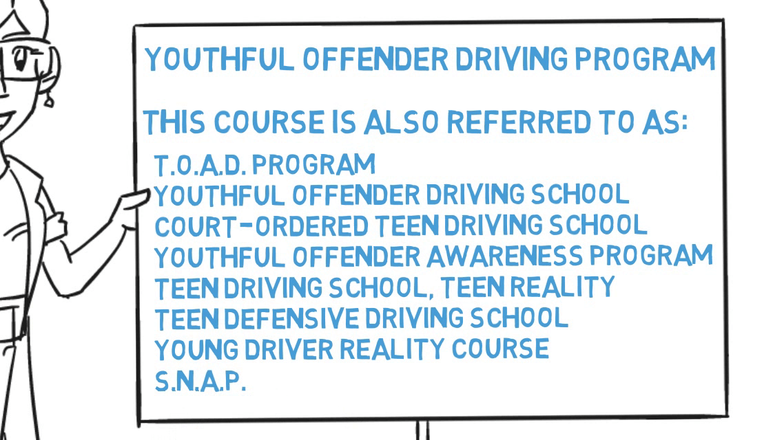 4 Hour TOAD / Youthful Offender Driving Program / Teen Defensive ...